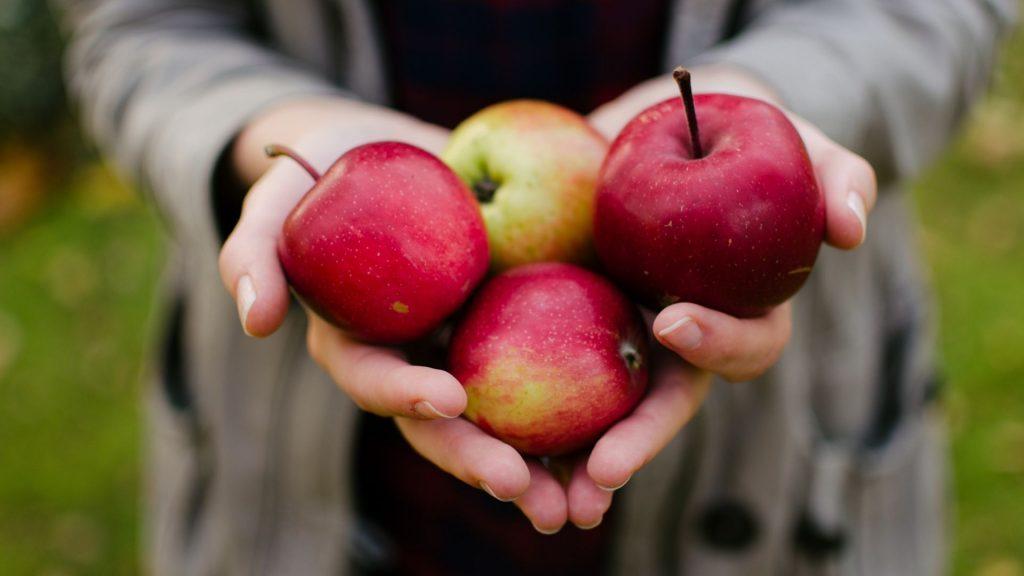TikTok types of apples